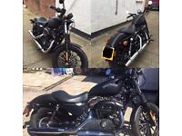 Harley Davidson Iron 883 for sale!