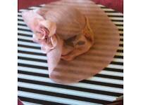 Hand crafted formal hats. Great for weddings or the races. Closing down sale, massive reductions
