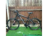 SPECIALIZED mountain bike for sell