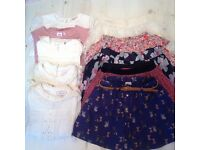 5-6 tops and skirts, including chihuahua print skirt