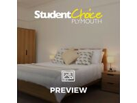 Spacious 1 bedroom apartment with large kitchen / lounge, large bedroom and rear courtyard