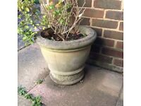 Large stone outdoor plant pot
