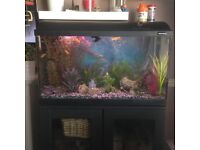 110 litre fish tank with added extras for sale