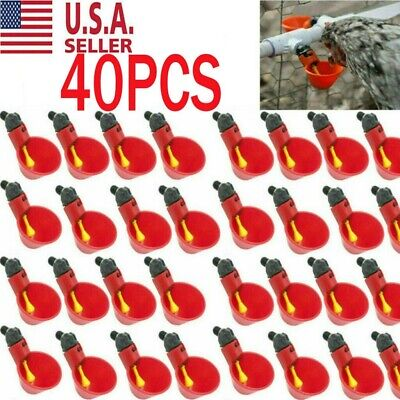 40pcs Poultry Water Drinking Cups Chicken Hen Plastic Automatic Drinker Usa