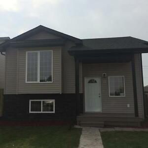 Brand New Home - Main Level Of house 12 Drummond Ave $1295 Inc.