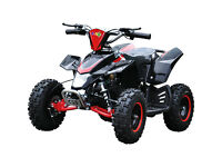 LT120EL 48V lithium Battery Child's Electric Quad Bike ATV