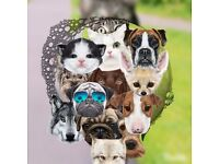 Dog & Cat Sitter