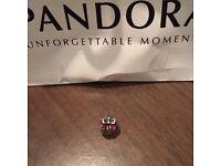 Pandora charms bundle