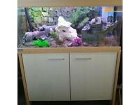 EHEIM MP 180 LITRE FISHTANK IN BEECHWOOD WITH MATCHING CABINET ONLY 6 MONTHS OLD IN MINT CONDITION