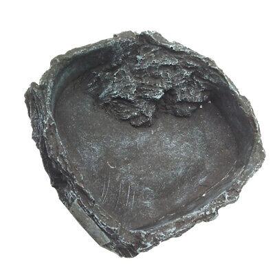 Reptil Essen Schüssel Wasser Schüssel Reptilien Zubehör für Schildkröte ()
