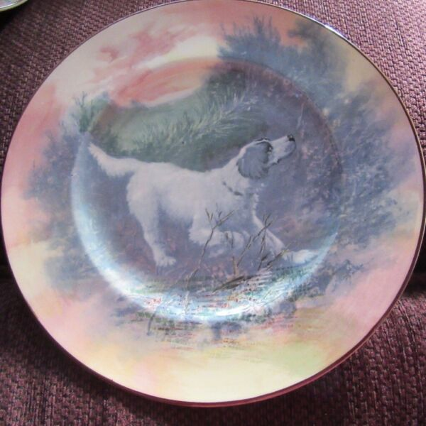 VINTAGE ROYAL DOULTON COLLECTORS PLATE D6313 ENGLISH SETTER for sale  Needham Market, Ipswich