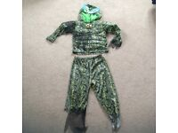 Boys lizard fancy dress costume age 7-8