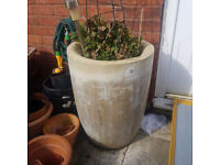 2 Deroma tall stone frost resistant garden plant pots £20 each (plants not included)