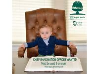 Chief Imagination Officer Wanted NATURELLY BRILLIANT JUNIOR NON-EXECUTIVE DIRECTOR – INNOVATION DEPT