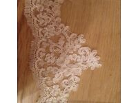 Cathedral veil by Pronovias 2.9 meter long ivory