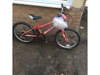 Raleighs girl bike