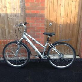 Adult Raleigh Bicycle