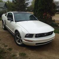 Beautiful mustang for only $14,500!!!