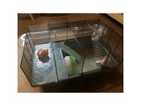 Small Hamster Cage + Silent Wheel
