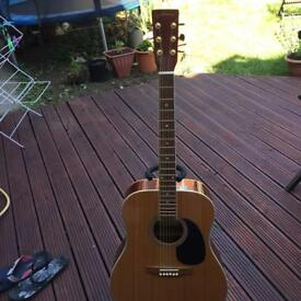 C.Giant acoustic guitar