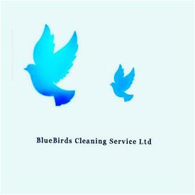Bluebirds cleaning service Ltd .... Commercial and Domestic