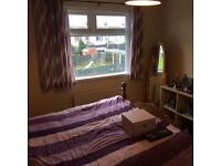 3 bed House available downpatrick