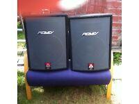 Peavey speakers , hardly used