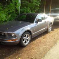 Ford Mustang 07 4.0L