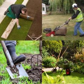 Garden / House Maintenance