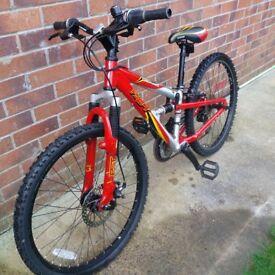 Child's Dual-Suspension Mountain Bike
