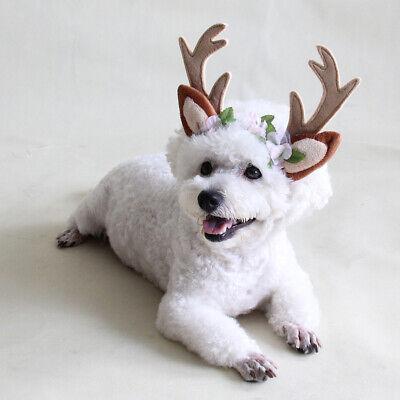 Headband Halloween Osterfest Hüte Kostüm für Haustier -L (Halloween Hüte Für Hunde)