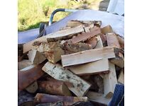KILN DRIED ASH FIREWOOD ( special price for 1 month )