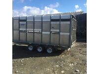 Ifor williams cattle livestock 14 ft triaxle trailer