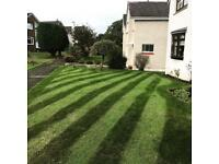 CM Landscaping & Garden Care Lawn/Grass Cutting Service