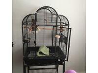 Parrot bird cage. Excellent condition