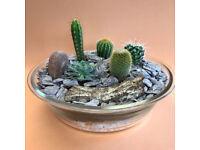 Cactus Garden Ornament