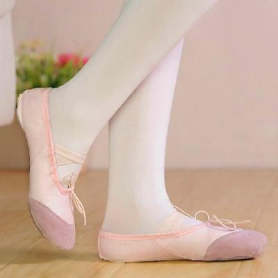 Pink Fairy Schuhe (PINK FAIRY CANVAS LEATHER BALLET SHOES SPLIT SOLE TODDLER DANCE ACCESSORIES)