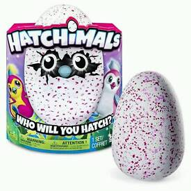 Hatchimals penguala pink egg
