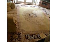 Very large oriental style rug