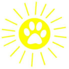 Dog walking with 'Walkies on Sunshine!' Covering NG5 and areas close by