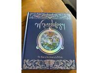 Wizardology Children's Book