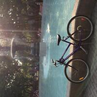 NICE BICYCLE FOR SUMMER