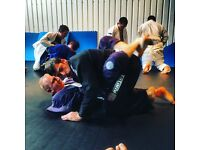 Brazilian Jiu Jitsu Classes in Chiswick/Hammersmith