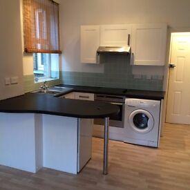 Studio Flat, Central Twickenham, Recently renovated, suit professional single