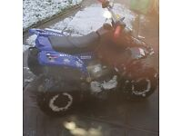 Kid kazuma meerkat 50cc semi auto quad