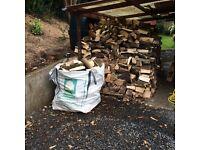 Hardwood firewood logs. Seasoned