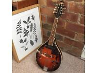 Lorenzo electro acoustic mandolin - Leeds pickup