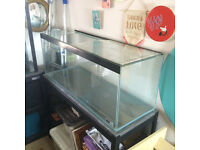 AMAZING DEAL 160l custom built tank plus great accessories! less than a year old, perfect for Discus