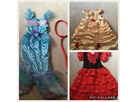 3-4 dress up costumes