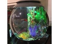 30 litre Biorb Halo in Grey, including heater, root centrepiece, decorative stones and plants